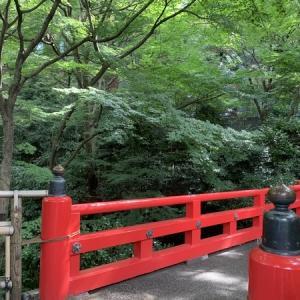 【Go To Travel】ホテル椿山荘東京-昼の庭園編