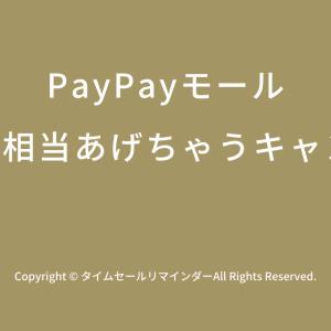 [2019年最新版]PayPayモールで100億円相当あげちゃうキャンペーン11月1日(金)0:00~2020年1月31日(金)23:59開催!おすすめの攻略方法を徹底解説!