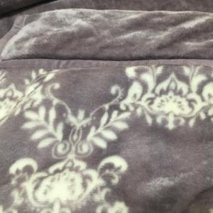 なんとか買えたニトリの毛布