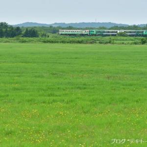 北海道撮り鉄の旅の振り返り 7月22日・23日分
