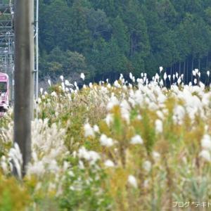 伊賀鉄道で秋を探しに