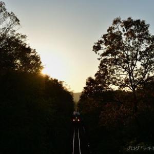 また、関西本線で夕景を