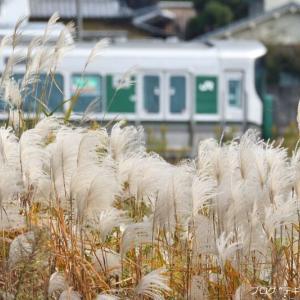 桜井線の三輪駅近くで