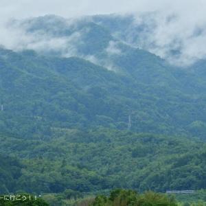 梅雨真っ最中の関西本線沿線に