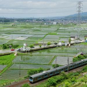 関西本線で田んぼと電車を