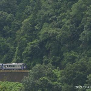 関西本線の加茂駅を遠くから