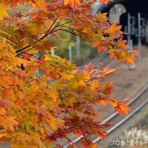 2020北海道撮り鉄の旅(10月20日・火曜日)