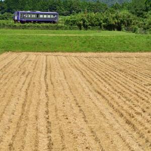 稲刈り前後の関西本線沿線に その2