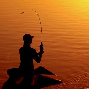 20年の時を経てまた釣りがしたくなった話