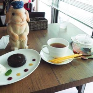 うさぎカフェ・ミニヨン吉祥寺に行きました。