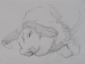 うさぎさんを描きました。クロッキー