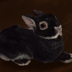 デジタルでうさぎさんを描きました。