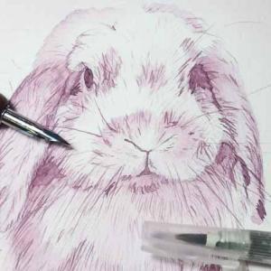 万年筆インクで絵を描こう!
