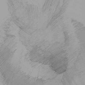 ちょっとずつうさぎさんを描いています。