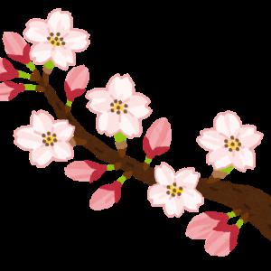 都立桜修館がyoutubeで学校紹介を開催 人数制限なし 6月18日から