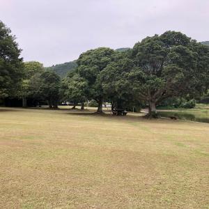シュノーケリングキャンプも楽しめる 須ノ川公園 @愛媛県 愛南