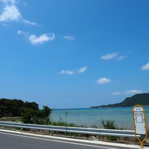石垣島 ダイビング マクロ1日目 2019GW
