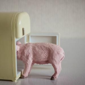 冷蔵庫の整理!まずすることはコレ!