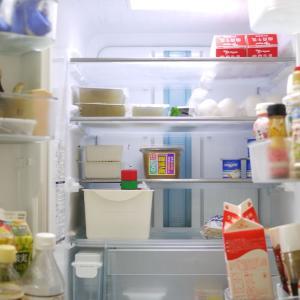 整理収納アドバイザーの冷蔵庫公開!整理収納法!