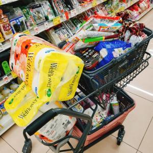 【ウエルシア】2万超えの買い物準備で食費節約(´˘`*)