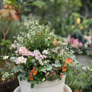 お花植え…