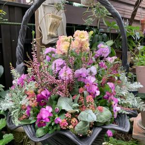 お花植え…綱木紋鉢使用