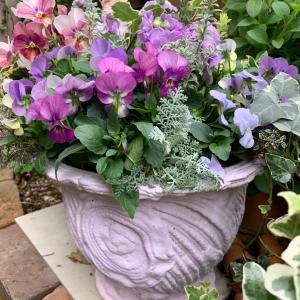 お花植え…壁掛け半円形タイプ