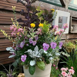 時を経て…花を楽しむ