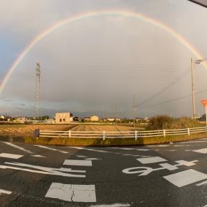 虹をみたよ…