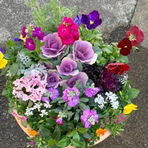 ずーっと楽しめる…お花植え