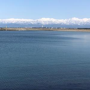 白い雪と青い海