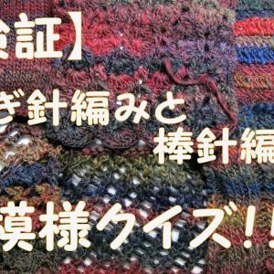 【検証】かぎ針編みと棒針編みで、模様クイズ!