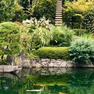 今日の目白庭園