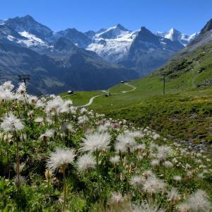 スイスハイキング      グリメンツ・ソルボア展望台
