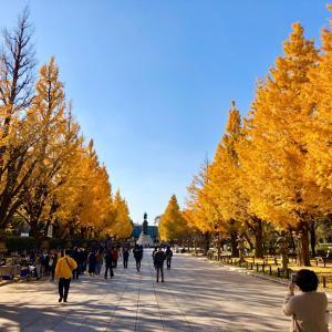 靖国神社の黃葉