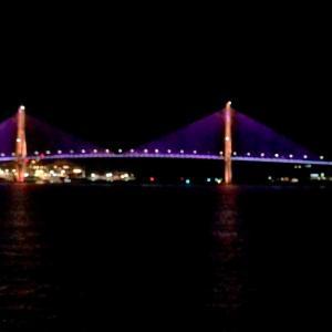 ダイヤモンドプリンセス   【動画あり】釜山港大橋の夜景