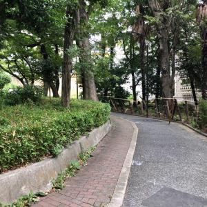 東京の200坂道を歩く    【動画あり】おばけ坂