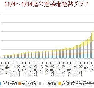東京新型コロナ         1/1~14迄の感染者総数