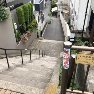東京の300坂道を歩く    【動画あり】しろへび坂
