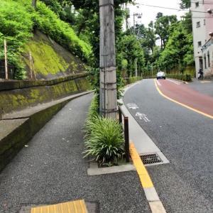 東京の300坂道を歩く    【動画あり】付属横坂