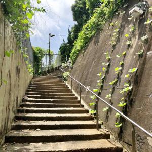 東京の300坂道を歩く    【動画あり】地蔵坂