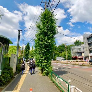 東京の300坂道を歩く    【動画あり】飛鳥大阪