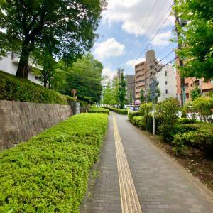 東京の300坂道を歩く    【動画あり】六石坂
