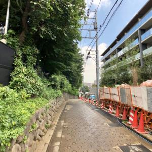 東京の300坂道を歩く    【動画あり】妙見寺坂