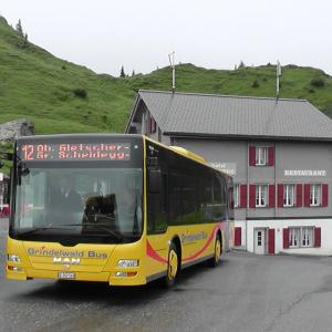 スイスハイキング      ラウターブルンネン~ウェンゲン~クライネシャイデック