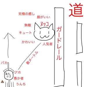 振り向きネコ