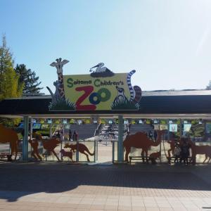 再訪!埼玉県こども動物自然公園 前編・遊具で遊んでカピバラ見学!