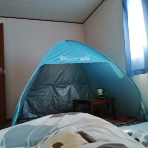 再びの庭テントと自家製プラネタリウム/GW4日目