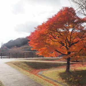 GoTo利用で那須へ温泉旅行・ハイライト