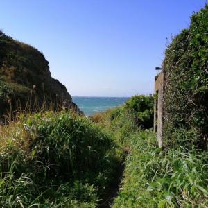 5分で行ける秘境・大波月海岸まで探検/千葉の風景